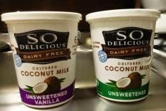SO Delicious Yogurt Alternative